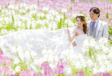 Frolicking amongst fields of lavender poppies marigold and sunflower by The Wedding & Co