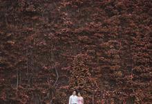 Abraham & Nirmala by VOI&VOX Photography