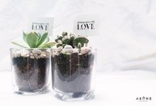 Wedding Souvenir for Dimas and Jasmine by ABANE Succulent