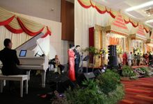 at Dyandra Ballroom by Moonlight Band