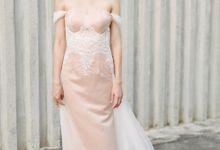 Elegant Lace by Miss Ann