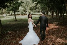 Prewedding in Kuala Lumpur by Cliff Choong Photography