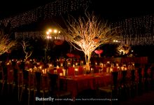 Lights camera action by Butterfly Event Styling