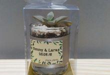 Glass planter Cactus & Succulent ( Tommy & Laras) by Ohana Plants