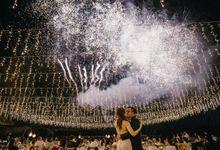 Winston Alexander & Gitta Angelina Wedding by Vi Organizer