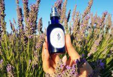 Lavandin Essential Oil at Lavandin Provence by Lavandin Provence
