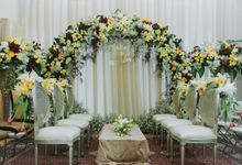 Engagement of Yolla & Ius by Warna Project