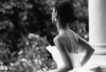 Wedding Gown by Monica Elisabeth