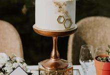 PORTFOLIO II by Winifred Kristé Cake