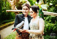 Javanese Prawedding Basufi & Nuri by Felix rusli Photoarts