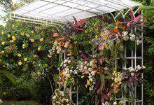Wedding Scenes from The Backyard by Kalea Design