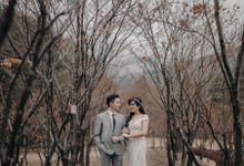 Artomi & Nathania Seoul Prewedding by Levin Pictures