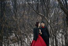 Beautiful Dream - Johan & Lina by Huemince