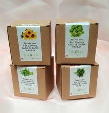 Souvenir Growing Kit DIY tanaman Radit & Indah by Ohana Plants