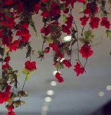 Vagadika + Rini Traditional Wedding Highlight by AB Photographs