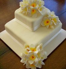 SIMPLY WHITE WITH FRANGIPANI by THE ORANGE FRESH BAKED