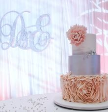 Blush pink and silver by Miss Shortcakes