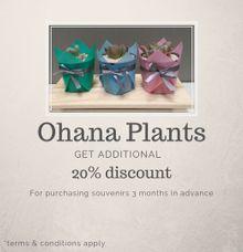 Additional discount 20% by Ohana Eco Souvenir