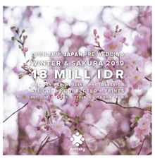 Japan Pre-Wedding Winter & Sakura 2019 by Ducosky