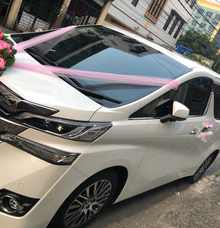 Alphard Vellfire 2017 for 5/5/18 wedding by Panen Rental Car